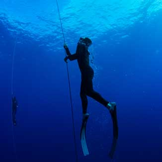 Level 1 Freediver Course